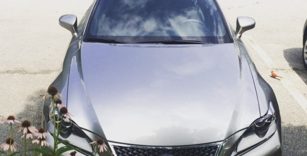 Luxetips Automobiles! 2015 Lexus IS 350 F: Luxurious and Powerful