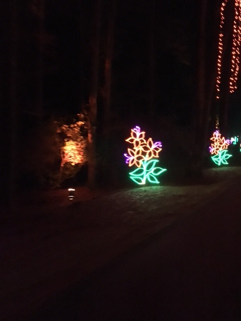 Callaway Gardens is an amazing place to visit during the Holidays! Fantasy in Lights is so magical for kids and adults too! The Birds of Prey exhibit and ...
